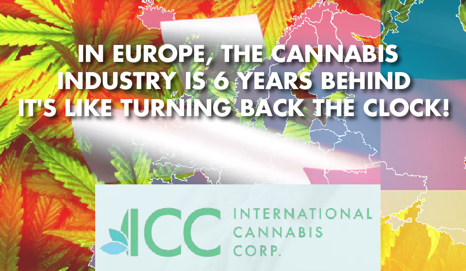 CANNABIS IS KING: Lucas Birdsall Talks Big Moves and Moneymaking Opportunities